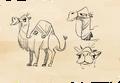 15 desert charecter sketch II