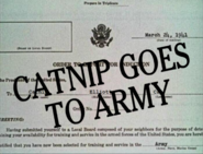 Catnip Goes To Army Title Card