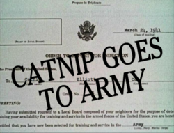 Catnip Goes To Army Title Card.png