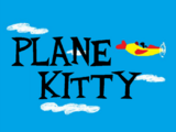 Plane Kitty (Fiona Cat)