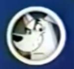 Miguzi icon - Krypto