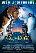 Cats & Dogs film