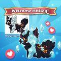 Halley Intro