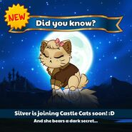 Silver Promotional