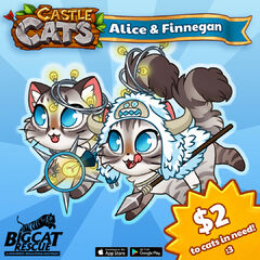 Alice & Finnegan Charity.jpg