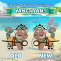 Yangnyan Official Image Before After