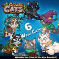 Six New Cats 2017