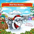 Santa Paws DYN Official Image