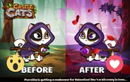 Purrcilla Official Image Before After