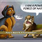 Pete Timewalker.jpeg