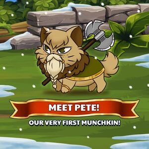 Pete Official Image.jpg