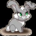 Hop Rank 1 (Old Version)
