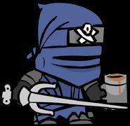 27 Ninja
