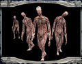 Legion Zombie Unused Portrait