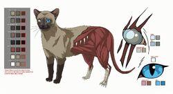 Hectors cat model sheet