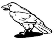 BL Raven