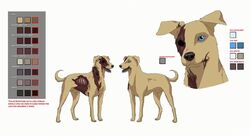 Hectors dog model sheet