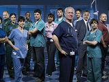 Series 23 (Casualty)