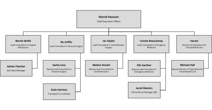 Holby City Hospital Organisation Chart.png