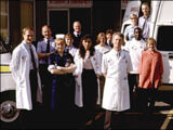 Series 6 (Casualty)