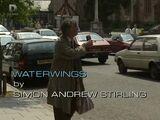 Waterwings