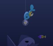 Crayfin Underwater