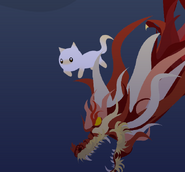 Cat swimming with The Dragon