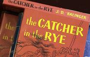 Catcher-cover