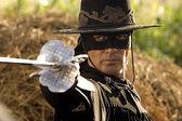 Zorro5.jpg