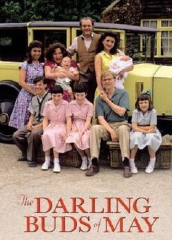 02. THE DARLING BUDS OF MAY (TV) (1991).jpg