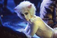 Victoria Phyllida C S Cats Film 05