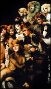 Deut Kittens l9206 13