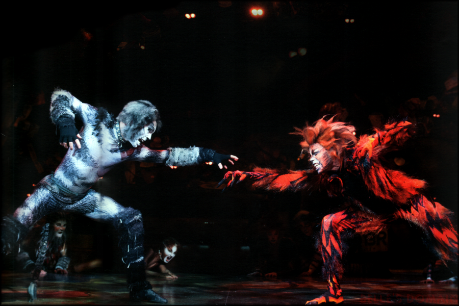 Macavity The Mystery Cat Fight Cats Musical Wiki Fandom