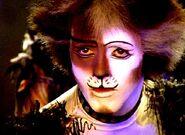 Tumble Fergus Logan film 01
