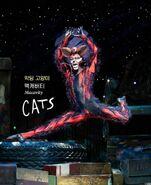 Macavity the mystery cat asia tour program 2020 (1)