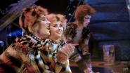 Mungo rumple 1998 film