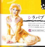 Sillabub Japan book 2014 cropped