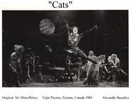 Mr. Mistoffelees 1985
