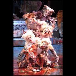 Kitten Pile 1 World Tour 2001 01.jpg