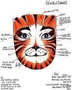 Skimbleshanks Makeup Design Karen Dawson 1
