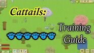 Cattails Game ~ Guide to Mentorship