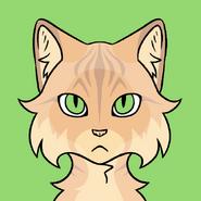 Pouty Cat