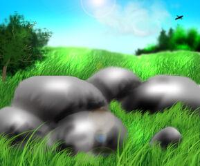 Нагретые Камни.jpg