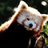 Alexangel881's avatar
