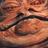 ScoreMagnet's avatar