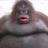 Craigeyislonely's avatar