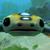 A Random Hoverfish