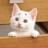 KoLy12F's avatar