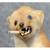 Raucherwiese