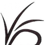 Snicket VFD's avatar